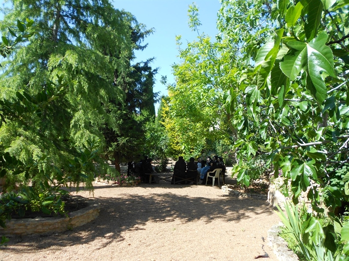 Foto desde la huerta del convento en Daimiel